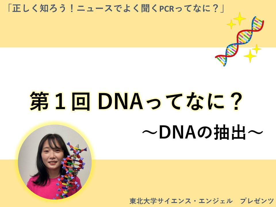 「正しく知ろう!ニュースでよく聞くPCRってなに?」第1回 DNAってなに? 〜DNAの抽出〜