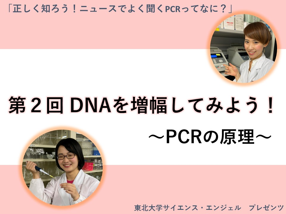 「正しく知ろう!ニュースでよく聞くPCRってなに?」第2回 DNAを増幅してみよう! 〜PCRの原理〜